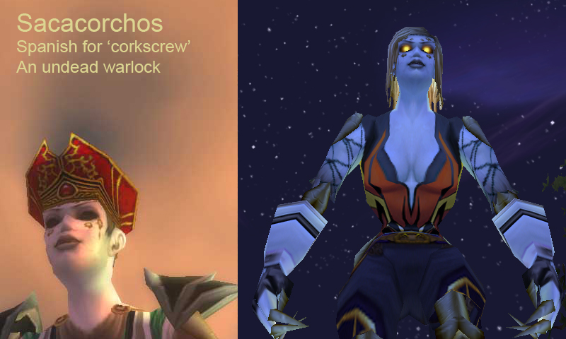 Not many screenshots survive from Sacacorchos' eventful undead career.