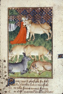 Pasiphae and the Bull
